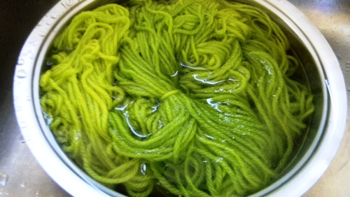 in the dye pot